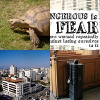 SBNR Daily 10-28-10: Fear Not!