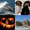 SBNR Daily 10-29-10: Happy Halloween!